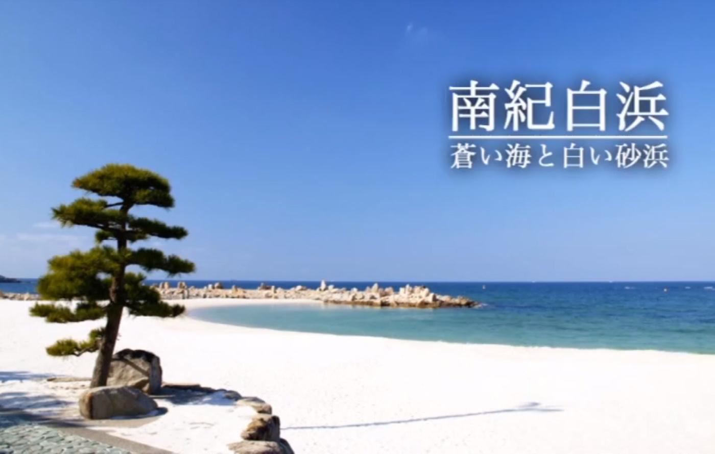 白浜やすらぎの宿泊り木動画1
